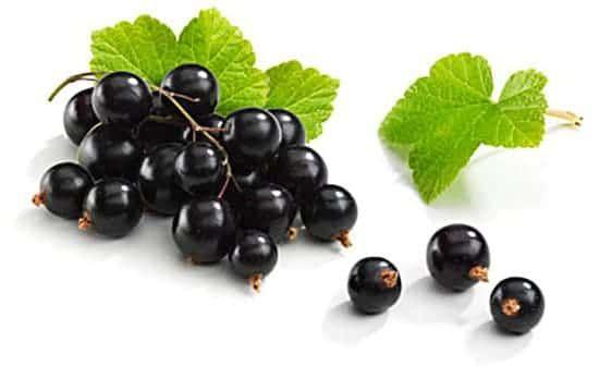 Frozen berries black currant 1kg