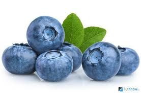 Frozen Berries bilberries 1kg